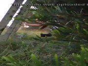 Vagabunda fudendo escondida no mato